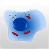 Cell Biology 101 Review iOS